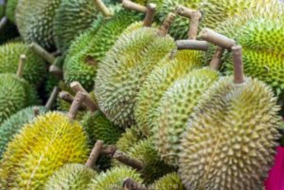 Je devrais quand même goûter le fruit avant de quitter la Malaisie...