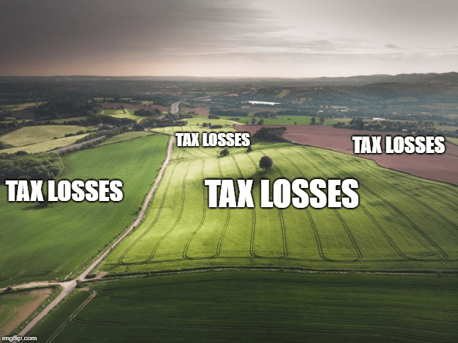 Tax losses