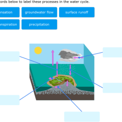 Labelled Diagram Of Water Cycle Mgb Gt Wiring Ixl Label Parts Diagrams 6th Grade Science