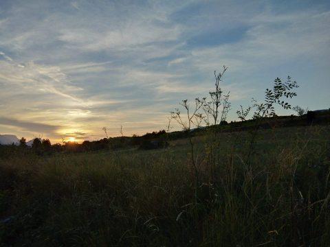 Luttez contre la sécheresse plantez des éoliennes - Crédit photo izart.fr