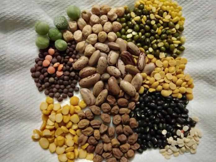 On veut du pois et de la lentille dans nos assiettes - Crédit photo izart.fr