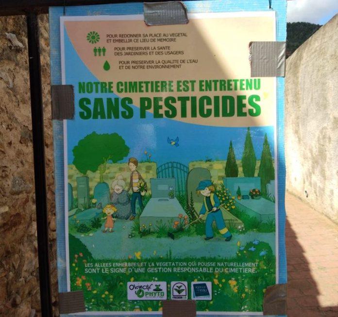 Les allergies au boulot sont redoutables - Crédit photo izart.fr