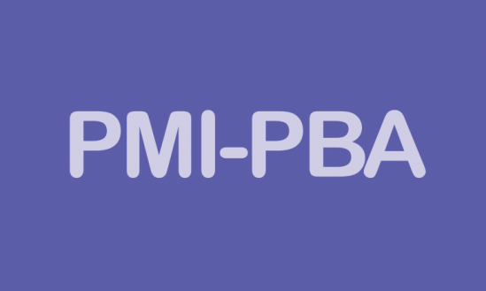 Image result for How much value does PMI PBA carries