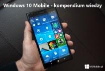 Microsoft Lumia 640 (3)