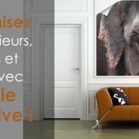 Customisez vos intérieurs, meubles et objets avec le poster adhésif !