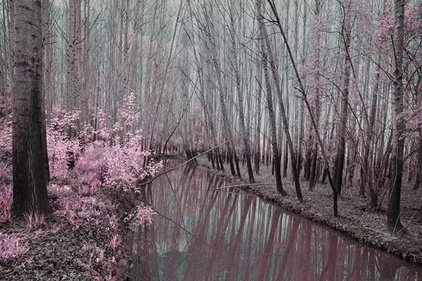 Tableau paysage Ruisseau  Izoa