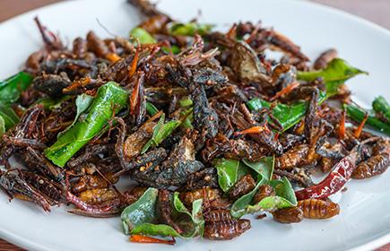 Cucina Thailandese Nel Mondo