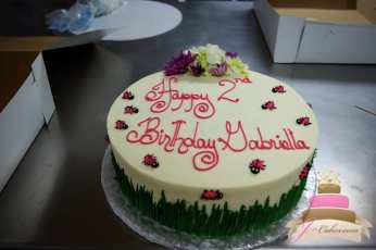 (429) Lady Bug Birthday Cake