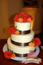 (1074) Smooth Wedding Cake with Brown Ribbon