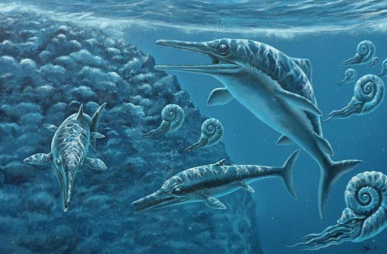 Paleo kunst zee schilderij. De onderwaterwereld uit de oertijd met verschillende uitgestorven dieren. Gemaakt door paleo kunstenaar Jaap Roos