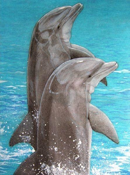 Dieren kunst van dolfijnen die springen uit het water. Getekend door dieren kunstenaar Jaap Roos, erg realistisch schilderij
