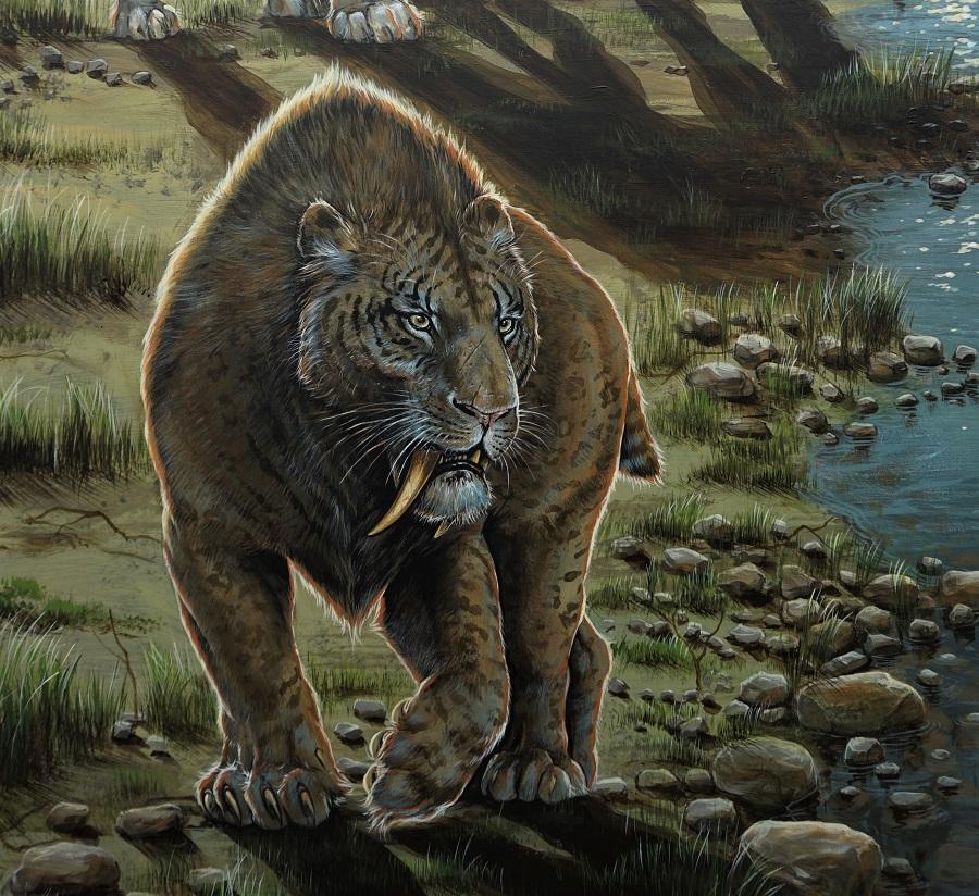 Paleontologisch verantwoord muurschildering. Goedgekeurd door Dick mol, in opdracht voor het decor van museum Historyland. Gemaakt door paleoartist Jaap Roos