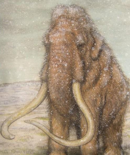Paleoart schilderij van de wolharige mammoet. Is gebruikt als illustratie van een boek