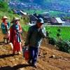 1744013EI-DIENG-Setiap-pagi-petani-Dieng-mendaki-bukit-menuju-ladang-kentang-foto-Anjas-Prawioko