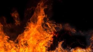 api meyala