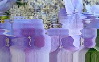 Receta de agua floral