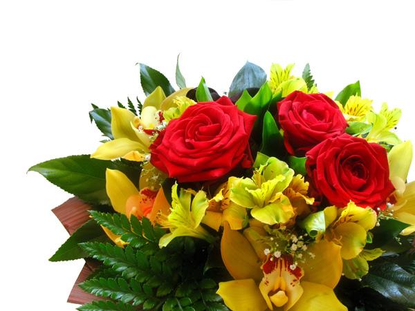 Feliz día de la Madre - jabonnatural.com