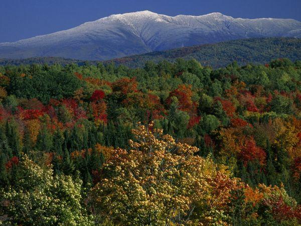 Colores de otoño en las Montañas Blancas