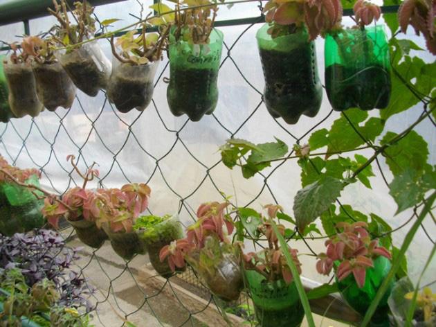 Floreros de plástico