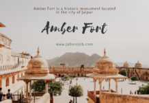 Amber Fort, Amber Fort Rajasthan, Amber Fort Information, History of Amber Fort, Location and Importance, amber fort entry fee, amber fort elephant ride, amer fort pictures