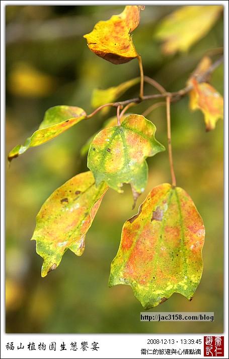 來去福山植物園【2/2】 - 宜蘭基隆地區 - 需仁的旅遊與心情點滴