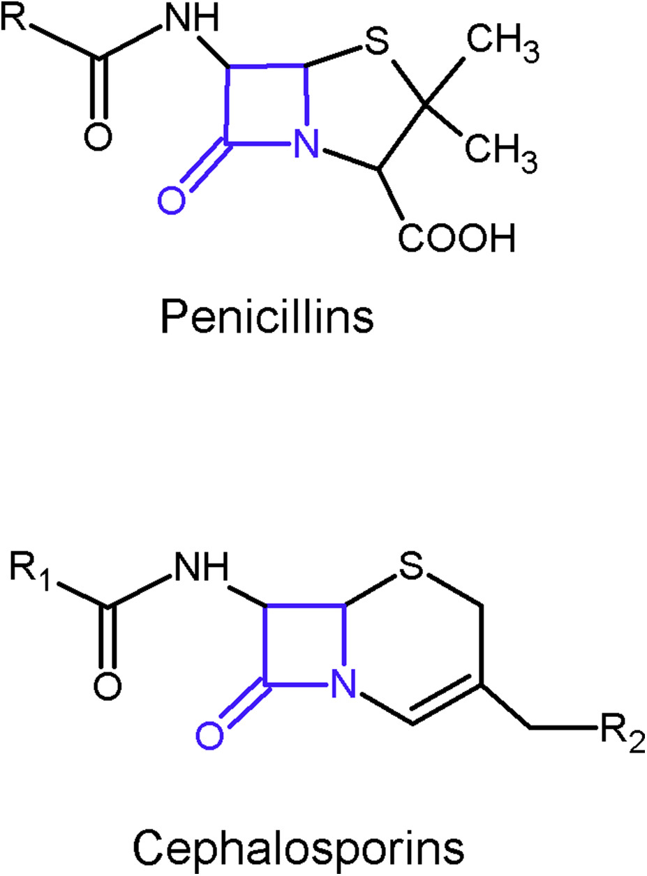 Are Cephalosporins Safe for Use in Penicillin Allergy