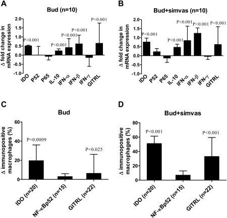 Statins enhance the anti-inflammatory effects of inhaled