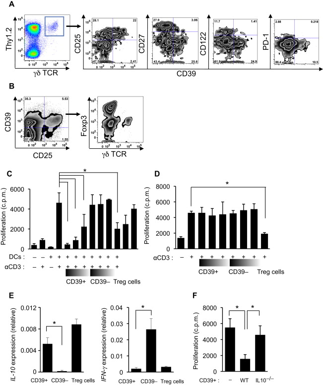 CD39: A new surface marker of mouse regulatory γδ T cells