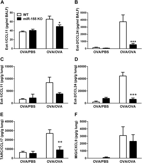 MicroRNA-155 is essential for TH2-mediated allergen