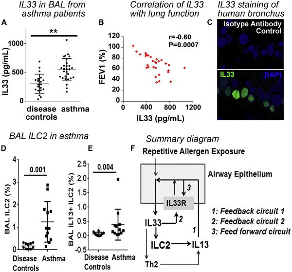 Supplemental Materials for Persistence of asthma requires