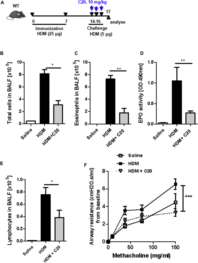 Protein kinase Cθ controls type 2 innate lymphoid cell and