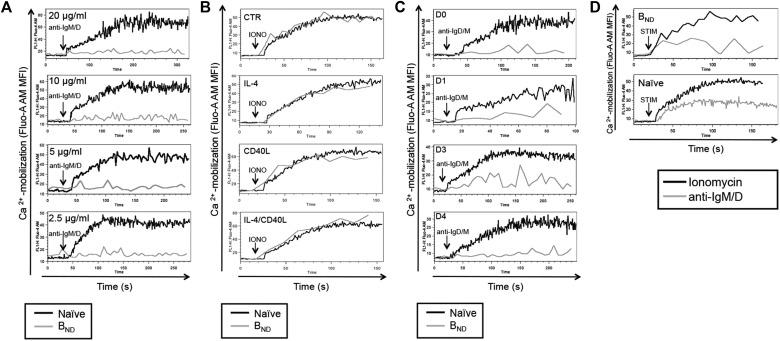 T-helper signals restore B-cell receptor signaling in