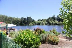 Lake Daylesford Playground, Daylesford-5