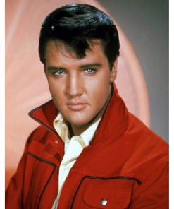 rock-and-roll-elvis-presley-red-jacket