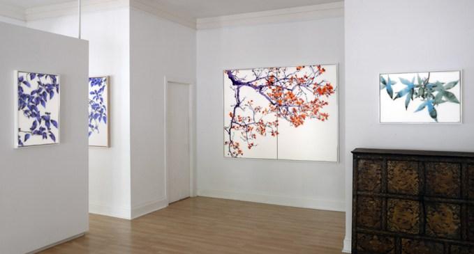 Addison Ripley Gallery