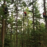 A Tree Top Adventure at Go Ape Aberfoyle