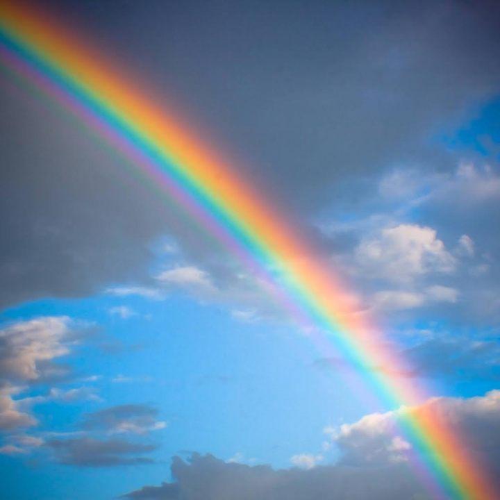 虹を連想させるモチーフ