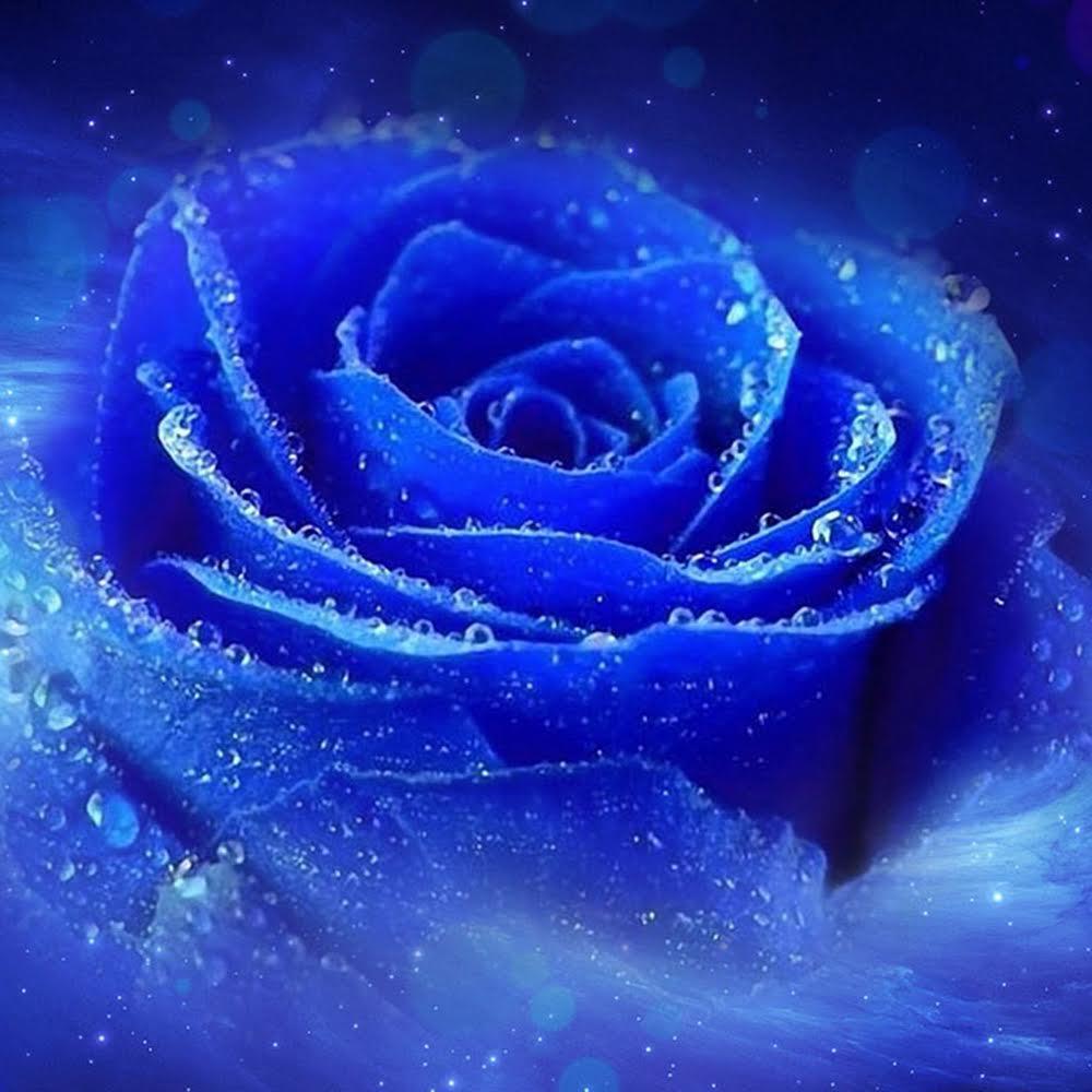 願いが叶う強力待ち受け10選 究極カラー奇跡のブルーローズを Love神さま 宇宙の愛 グルメや旅 アートにミュージック