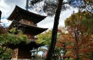 豪徳寺五重塔