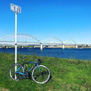 江戸川河川敷のサイクリングロード