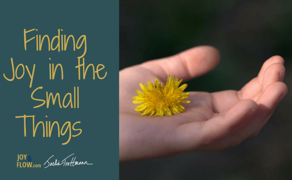 Finding Joy in the Small Things