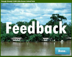 Feedback Placeholder
