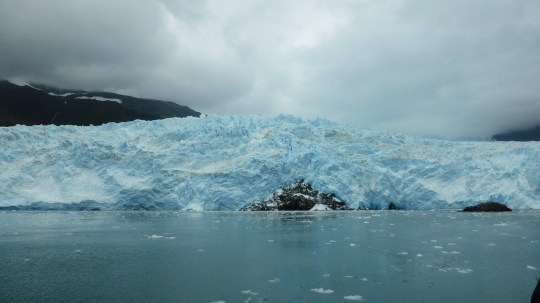 The massive Aialik Glacier.