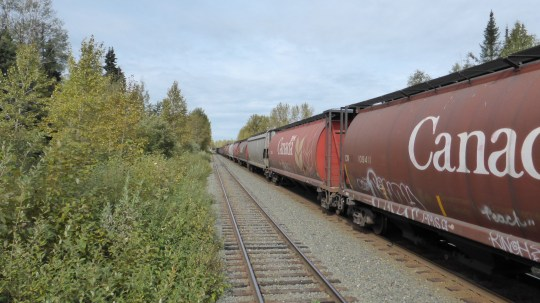 Passing one of the massive goods trains heading to Prince Rupert.