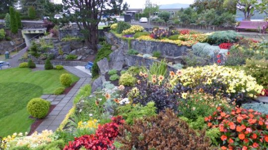 Sunken Gardens behind court house in Prince Rupert.