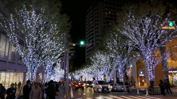 Christmas lights at Roppongi Hills near our apartment