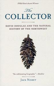Collector-slider