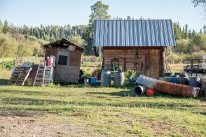 The Funky Acres Farm