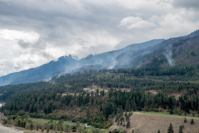 Forst fires along the Frase river