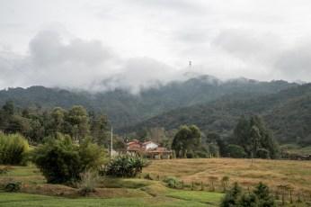 garden ecohostel